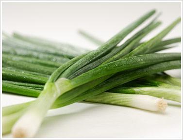health benefits green onion